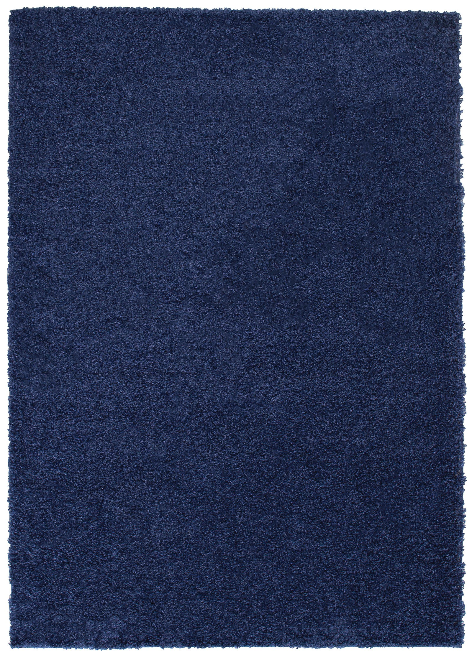 Zandi Shagg Area Rug in Dark Blue