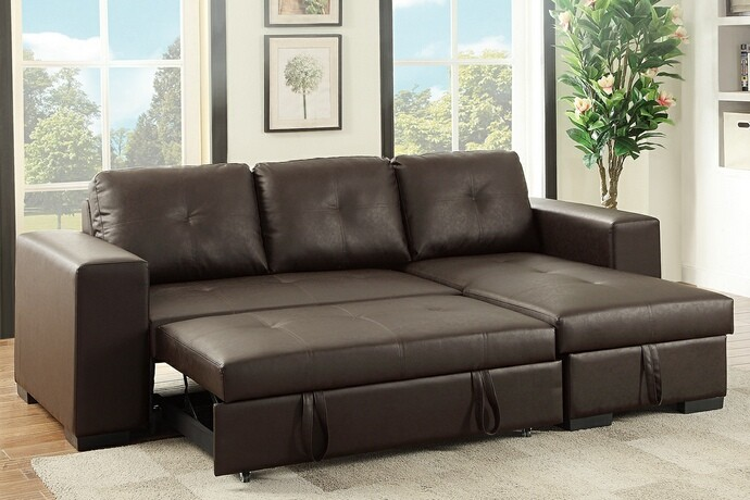 2 pc Daryl Sectional with pull out bed