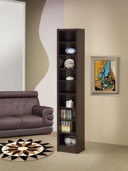 Arica Bookcase