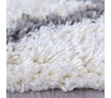 Zafirah Shagg Area Rug in Ivory/Gray