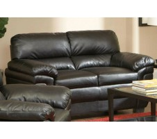 Finley Loveseat black